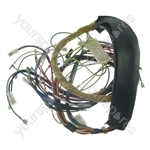Wiring Harness - Copreci Td 010070